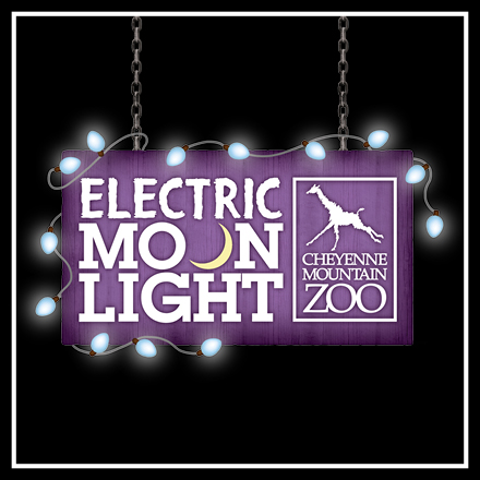 Electric Moonlight Logo