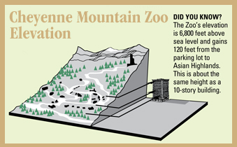 Zoo elevation scale rendering example of grade image