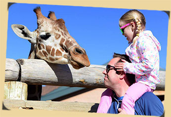 Father and daughter enjoy giraffe encounter together photo
