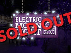 Electric Moonlight event is sold out