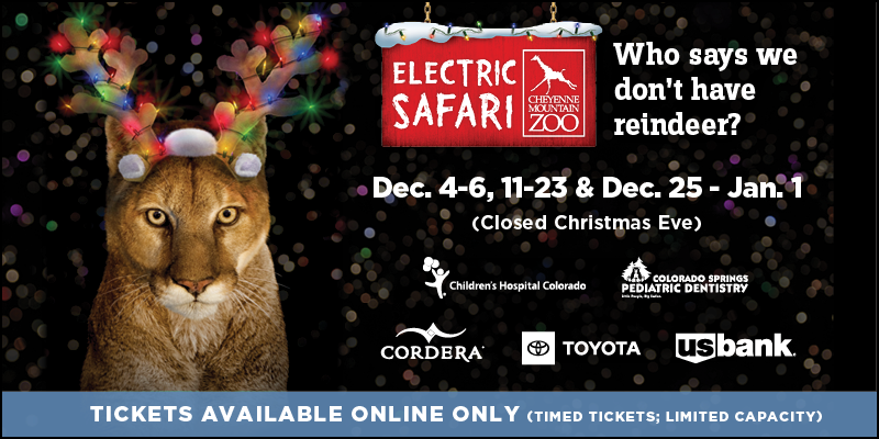 Electric Safari - Dec. 4-6, 11-23, 25-Jan. 1, 2021