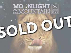 Moonlight on the Mountain Tickets are sold out for August 2020