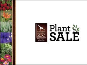 Annual Plant Sale graphic
