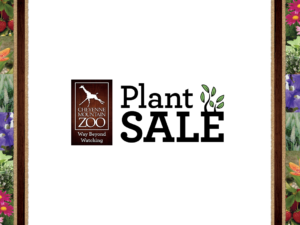 Shop the Annual Plant Sale Online Only this year, April 13-May 3, 2020