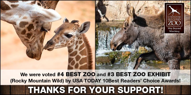 Best Zoo & Best Zoo Exhibit