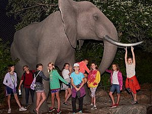 Evening tour of children at elephant statue