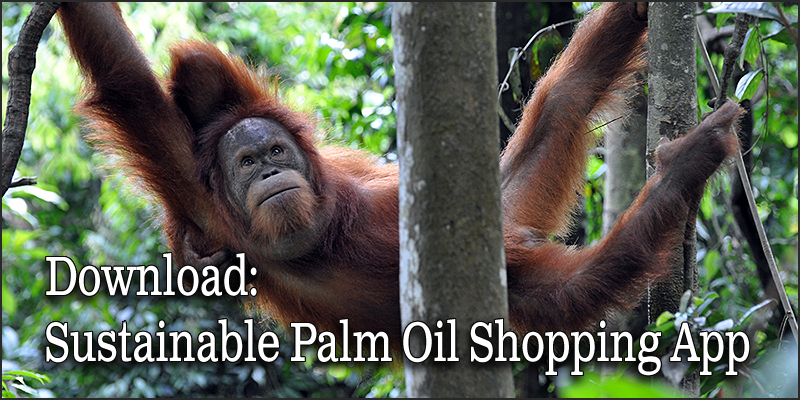 Palm Oil Shopping App - Free download