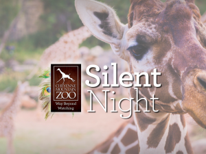 Silent Night at the Zoo