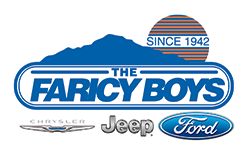 Visit The Faricy Boys's Website