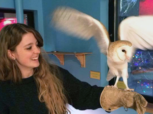 Adult Zoo guest working with an owl