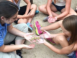 Zoo staff sharing animal amabassador with family program children