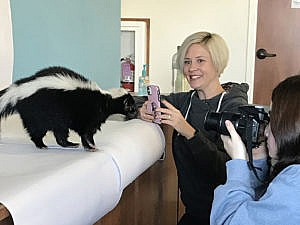 Guests photographing a skunk in Animal Photography Outdoor School class