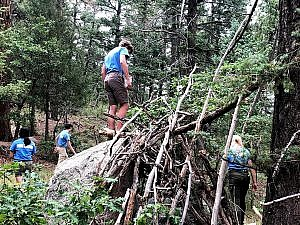 Teen wildnerness 101 class- in woods building shelter