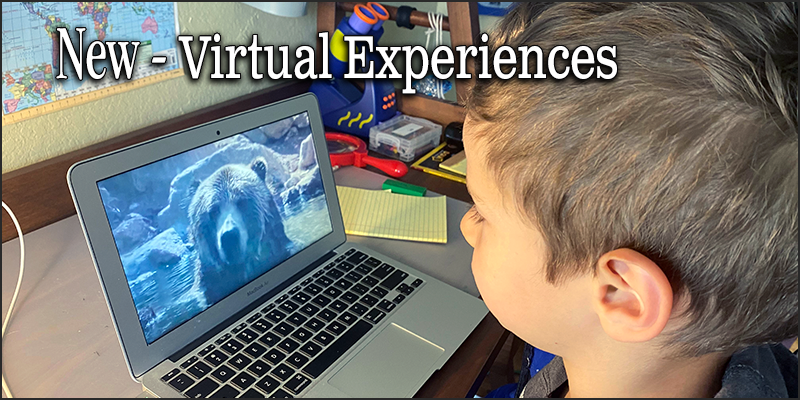 Discover new Virtual Experiences